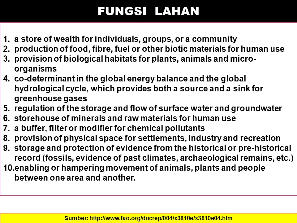 FUNGSI LAHAN 1.a store of wealth for individuals, groups, or a community 2.production of food, fibre, fuel or other biotic materials for human use 3.p