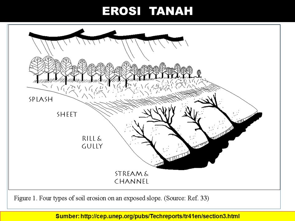 EROSI TANAH Sumber: http://cep.unep.org/pubs/Techreports/tr41en/section3.html