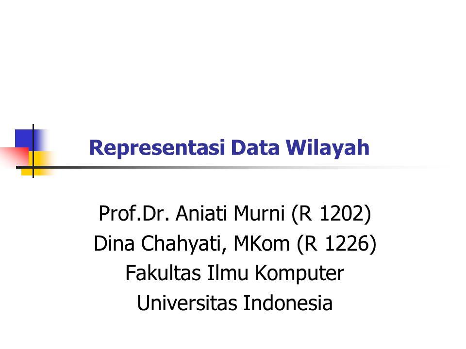 2 Representasi Data Wilayah Vector: area (polygon) Raster: relational table Raster : quadtree