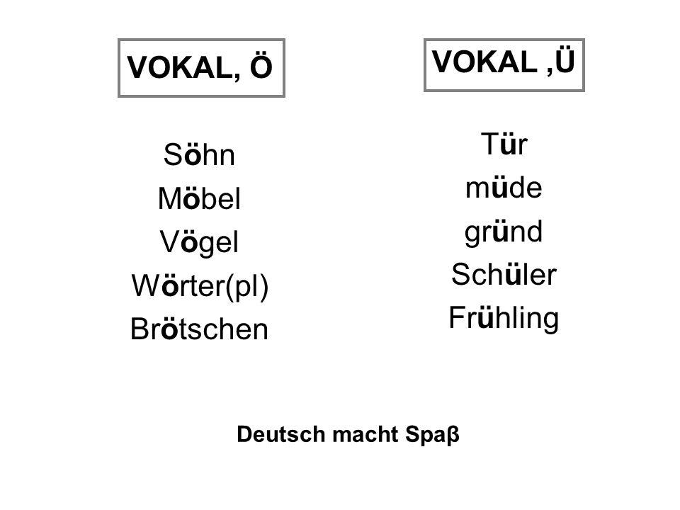 VOKAL, Ö Söhn Möbel Vögel Wörter(pl) Brötschen VOKAL,Ü Tür müde gründ Schüler Frühling Deutsch macht Spaβ