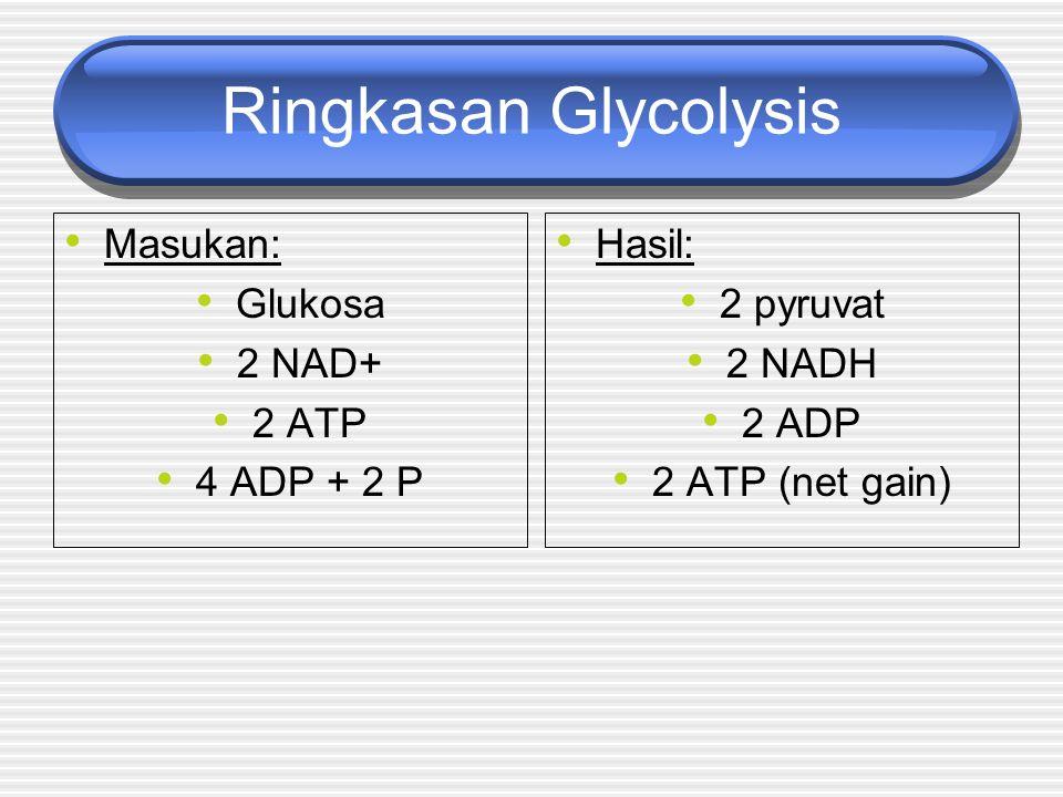 Ringkasan Glycolysis Masukan: Glukosa 2 NAD+ 2 ATP 4 ADP + 2 P Hasil: 2 pyruvat 2 NADH 2 ADP 2 ATP (net gain)