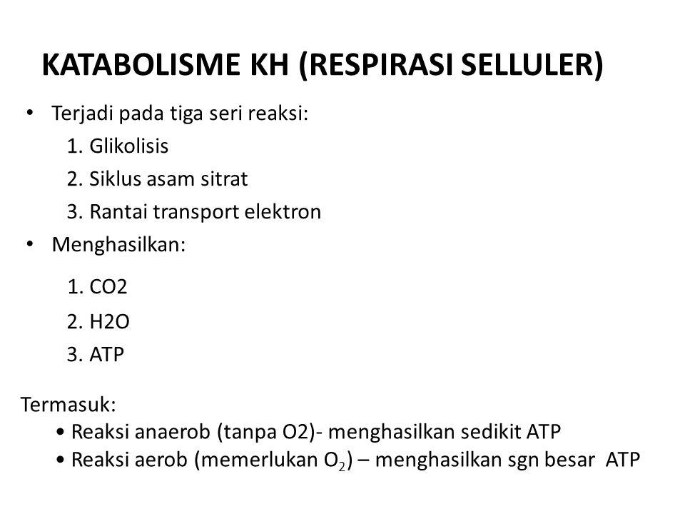KATABOLISME KH (RESPIRASI SELLULER) Terjadi pada tiga seri reaksi: 1. Glikolisis 2. Siklus asam sitrat 3. Rantai transport elektron Menghasilkan: 1. C