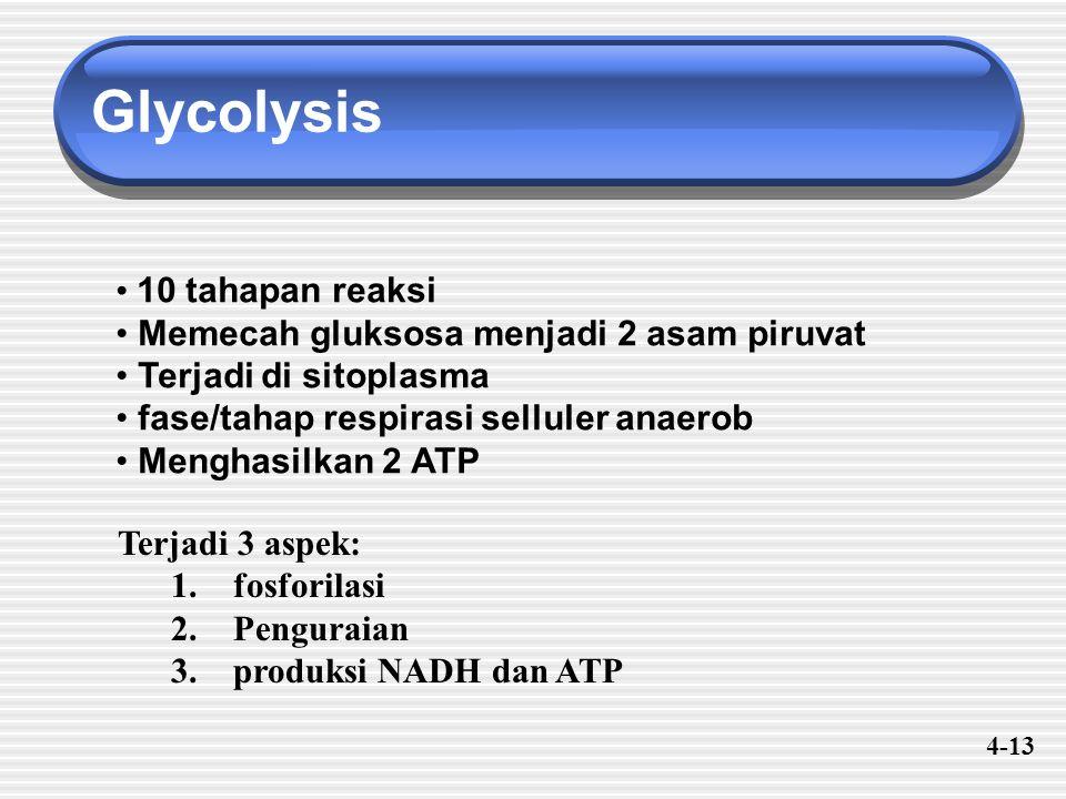 Glycolysis 10 tahapan reaksi Memecah gluksosa menjadi 2 asam piruvat Terjadi di sitoplasma fase/tahap respirasi selluler anaerob Menghasilkan 2 ATP Terjadi 3 aspek: 1.