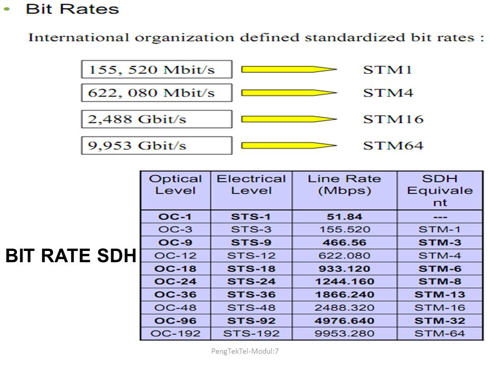 BIT RATE SDH