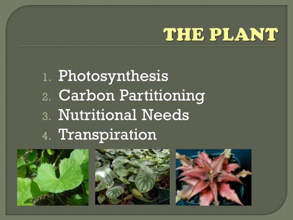 its about.. An understanding of the ways individual plants and their physiology are impacted by different factors of the environment is an essential c