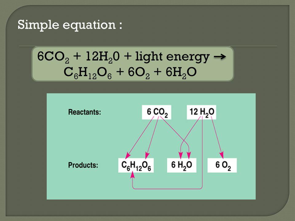 Simple equation : 6CO 2 + 12H 2 0 + light energy C 6 H 12 O 6 + 6O 2 + 6H 2 O