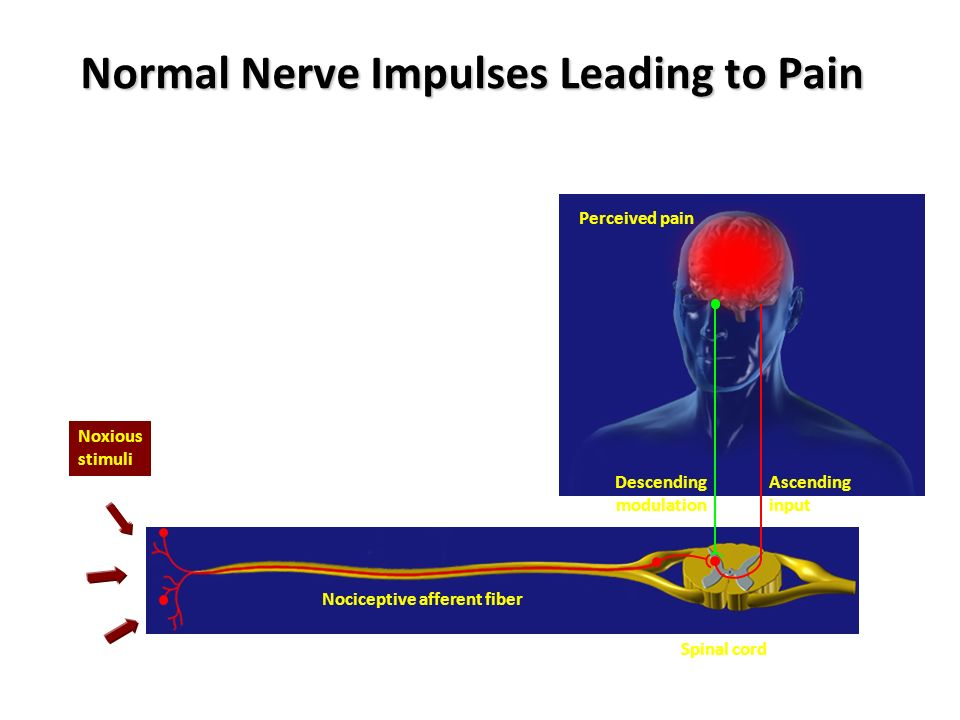 MECHANISM OF NEUROPATHIC PAIN I.PERIPHERAL MECHANISM 1.