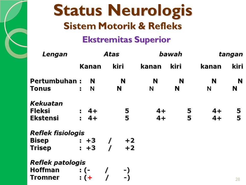 Status Neurologis Sistem Motorik & Refleks Ekstremitas Superior Lengan Atas bawah tangan Kanan kiri kanan kiri kanan kiri Kanan kiri kanan kiri kanan