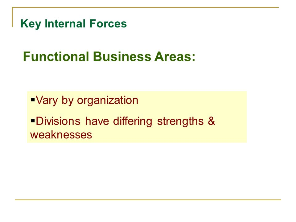Key Internal Forces Functional Business Areas:  Vary by organization  Divisions have differing strengths & weaknesses