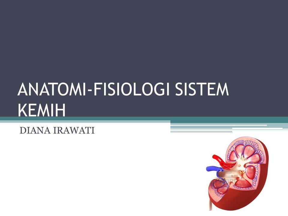 FISIOLOGI GINJAL Regulasi volume darah melalui proses sekresi air Regulasi elektrolit darah Regulasi keseimbangan asam-basa melalui eksresi ion H+ dan HCO3 Produksi dan sekresi hormon Ekskresi produk sisa metabolisme Regulasi tekanan darah