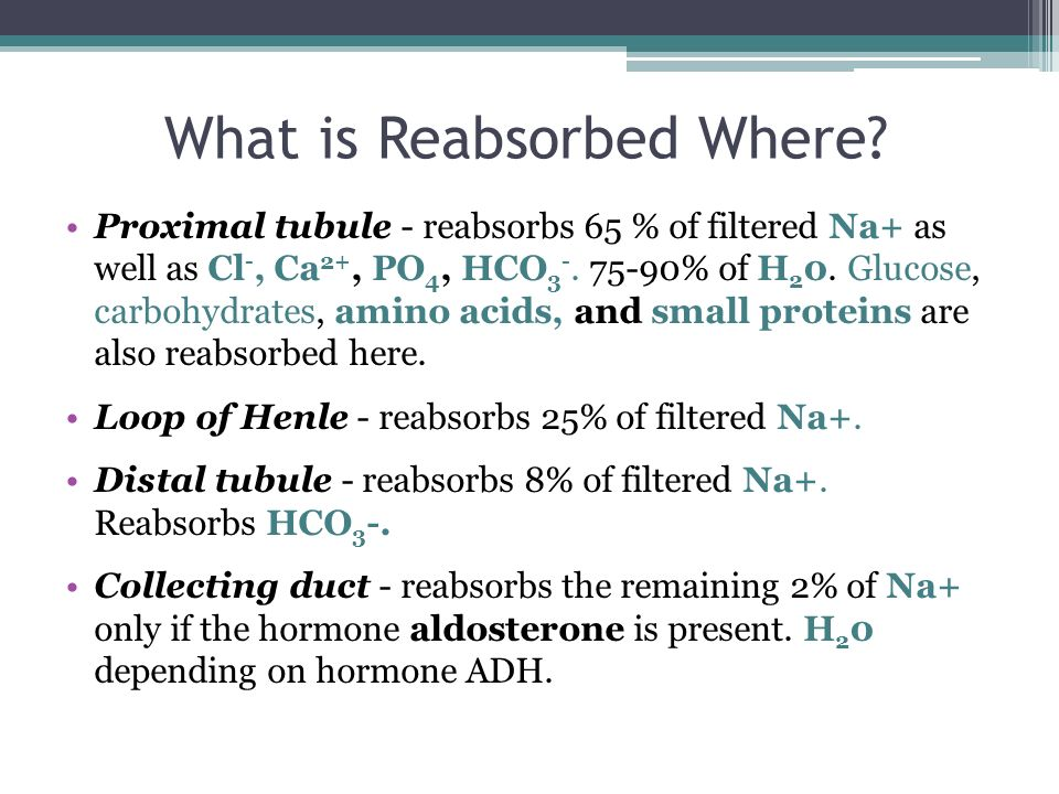 What is Reabsorbed Where.