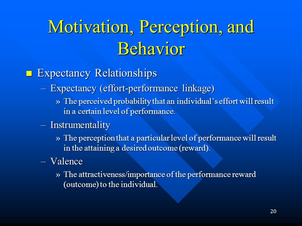20 Motivation, Perception, and Behavior Expectancy Relationships Expectancy Relationships –Expectancy (effort-performance linkage) »The perceived probability that an individual's effort will result in a certain level of performance.