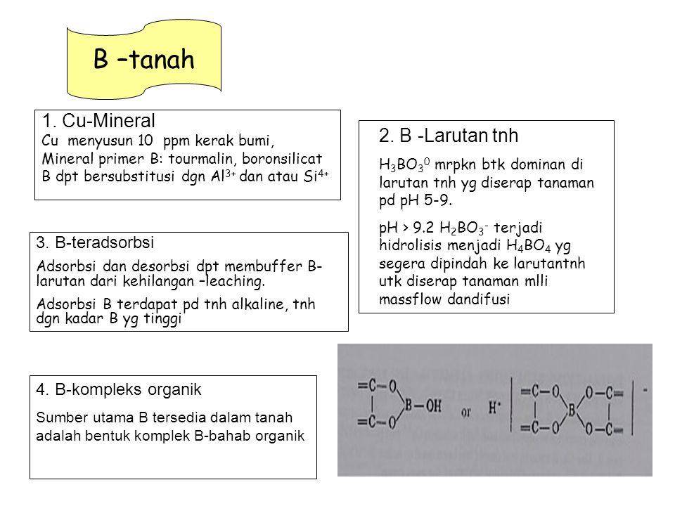 1. Cu-Mineral Cu menyusun 10 ppm kerak bumi, Mineral primer B: tourmalin, boronsilicat B dpt bersubstitusi dgn Al 3+ dan atau Si 4+ B –tanah 2. B -Lar