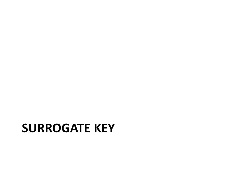 SURROGATE KEY