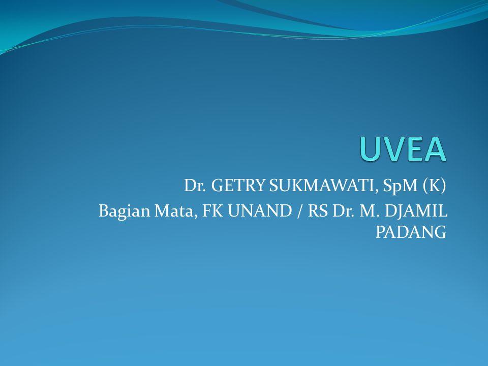 Dr. GETRY SUKMAWATI, SpM (K) Bagian Mata, FK UNAND / RS Dr. M. DJAMIL PADANG