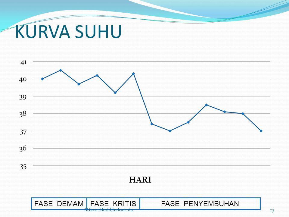KURVA SUHU FASE DEMAMFASE KRITISFASE PENYEMBUHAN 25Mikro Akbid Indonesia