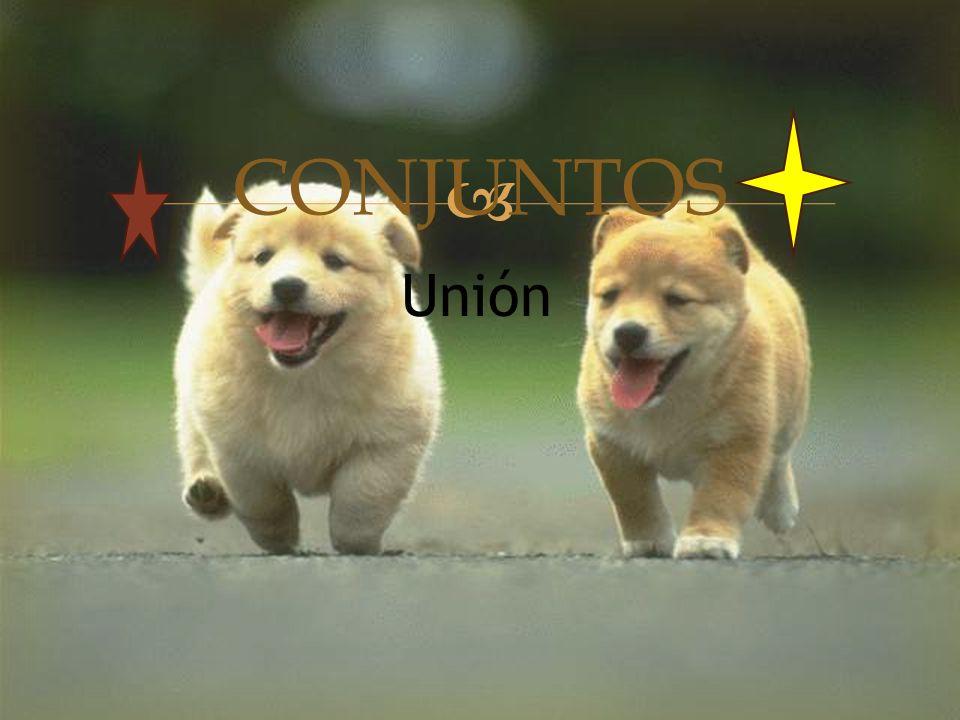  CONJUNTOS Unión