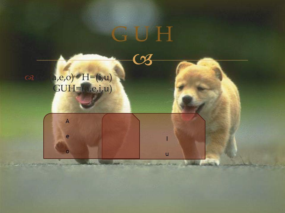   G=(a,e,o)H=(i,u) GUH=(a,e,i,u) G U H AeoAeo IuIu