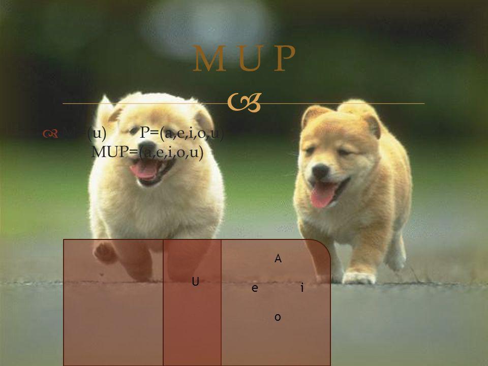   M=(u)P=(a,e,i,o,u) MUP=(a,e,i,o,u) M U P U AeioAeio