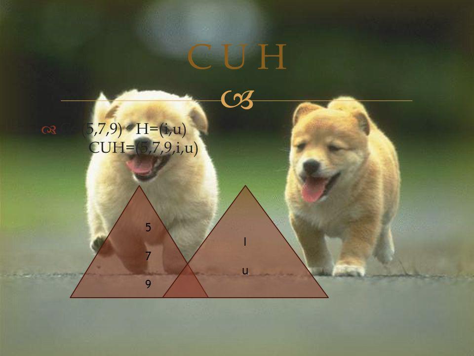   C=(5,7,9)H=(i,u) CUH=(5,7,9,i,u) C U H IuIu 579579
