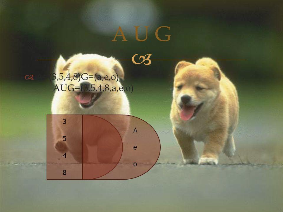   A=(3,5,4,8)G=(a,e,o) AUG=(3,5,4,8,a,e,o) A U G 35483548 AeoAeo