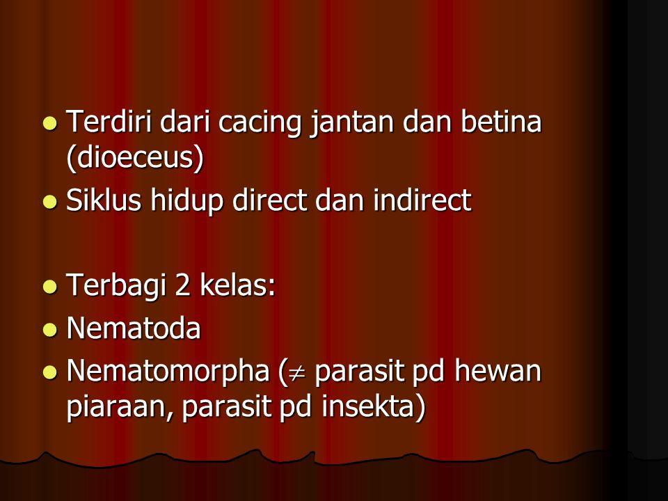 Terdiri dari cacing jantan dan betina (dioeceus) Terdiri dari cacing jantan dan betina (dioeceus) Siklus hidup direct dan indirect Siklus hidup direct dan indirect Terbagi 2 kelas: Terbagi 2 kelas: Nematoda Nematoda Nematomorpha (  parasit pd hewan piaraan, parasit pd insekta) Nematomorpha (  parasit pd hewan piaraan, parasit pd insekta)