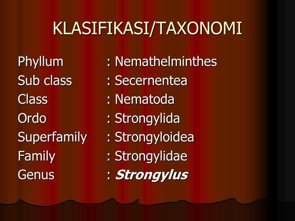 KLASIFIKASI/TAXONOMI Phyllum: Nemathelminthes Sub class: Secernentea Class: Nematoda Ordo: Strongylida Superfamily: Strongyloidea Family: Strongylidae Genus: Strongylus