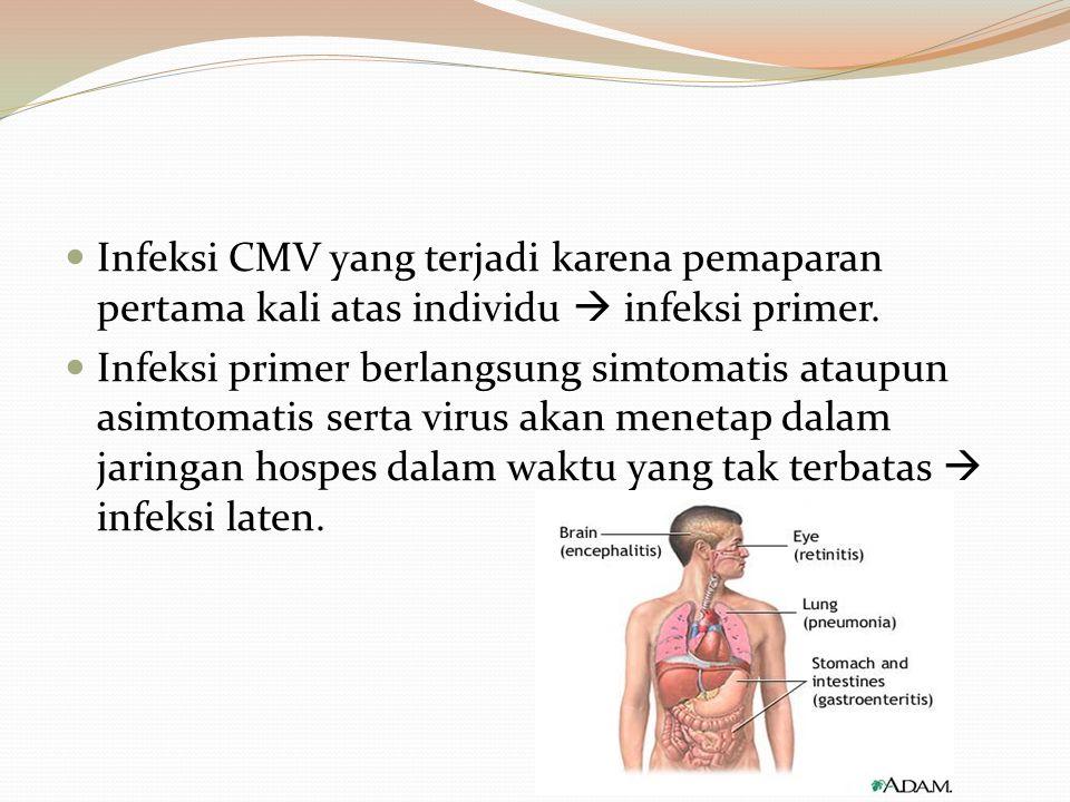 Infeksi CMV yang terjadi karena pemaparan pertama kali atas individu  infeksi primer. Infeksi primer berlangsung simtomatis ataupun asimtomatis serta