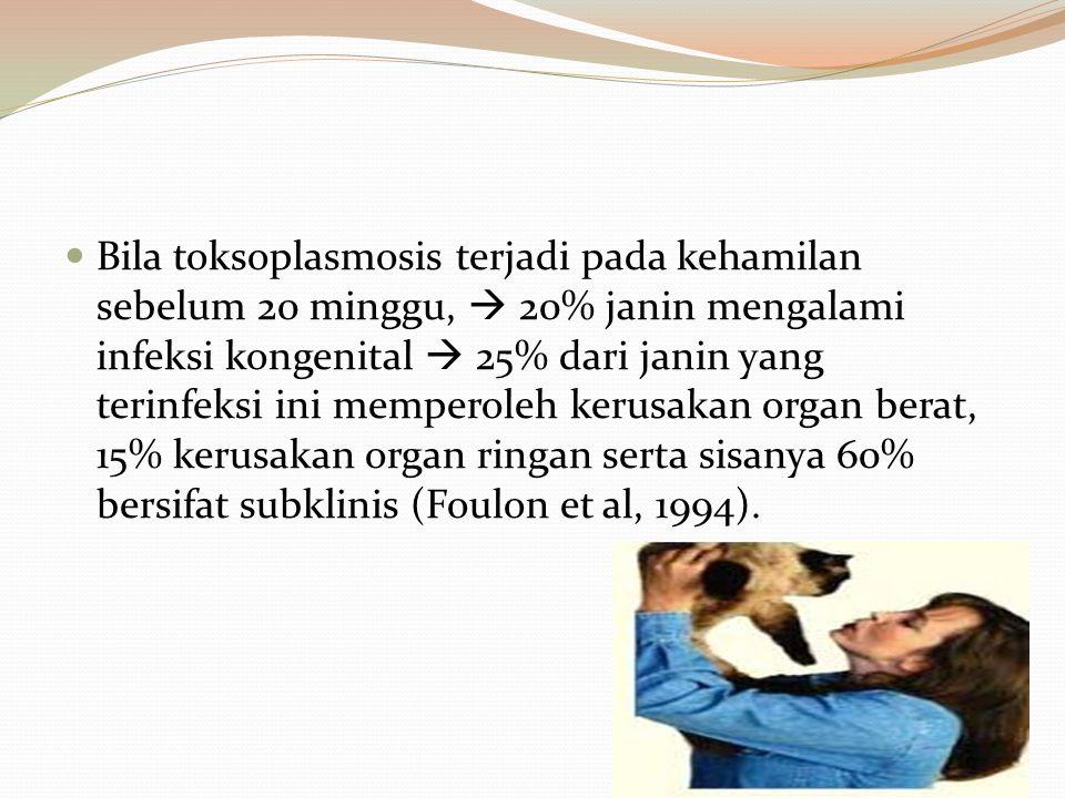 Bila toksoplasmosis terjadi pada kehamilan sebelum 20 minggu,  20% janin mengalami infeksi kongenital  25% dari janin yang terinfeksi ini memperoleh