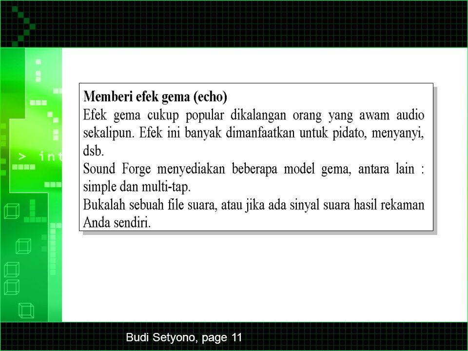 Budi Setyono, page 11