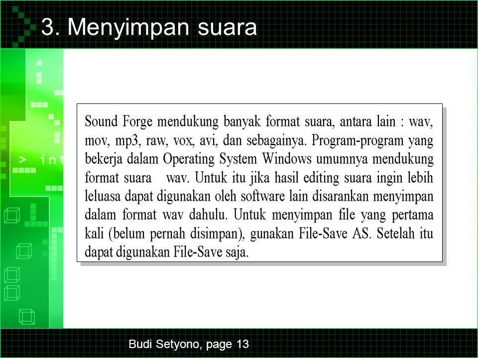 Budi Setyono, page 13 3. Menyimpan suara