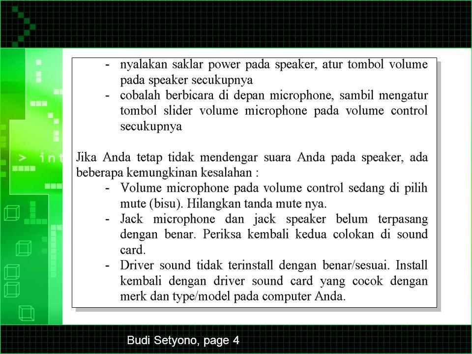 Budi Setyono, page 5