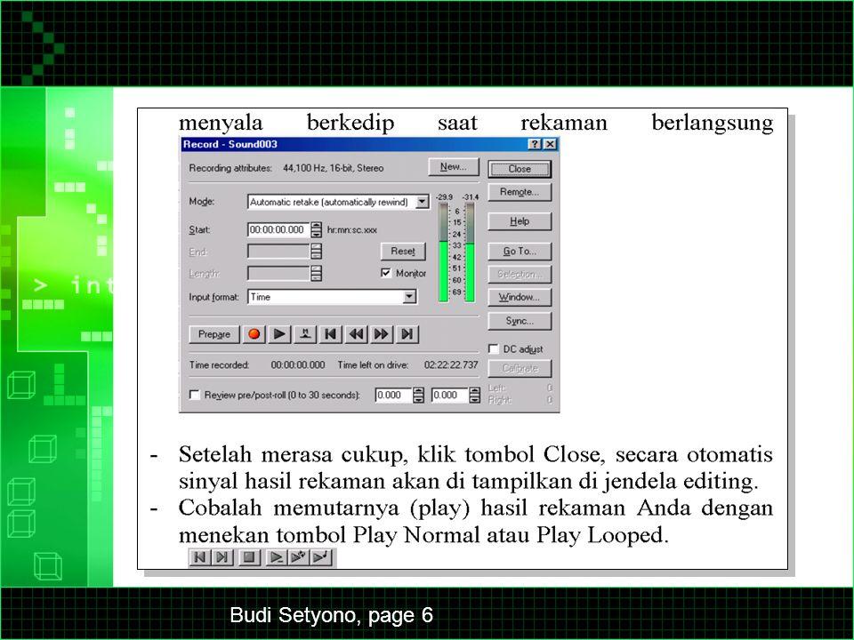 Budi Setyono, page 6