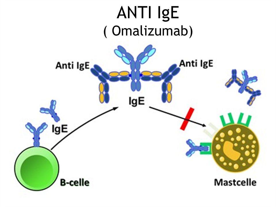 ANTI IgE ( Omalizumab)