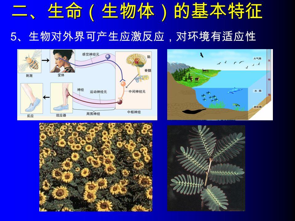 二、生命(生物体)的基本特征 5 、生物对外界可产生应激反应,对环境有适应性