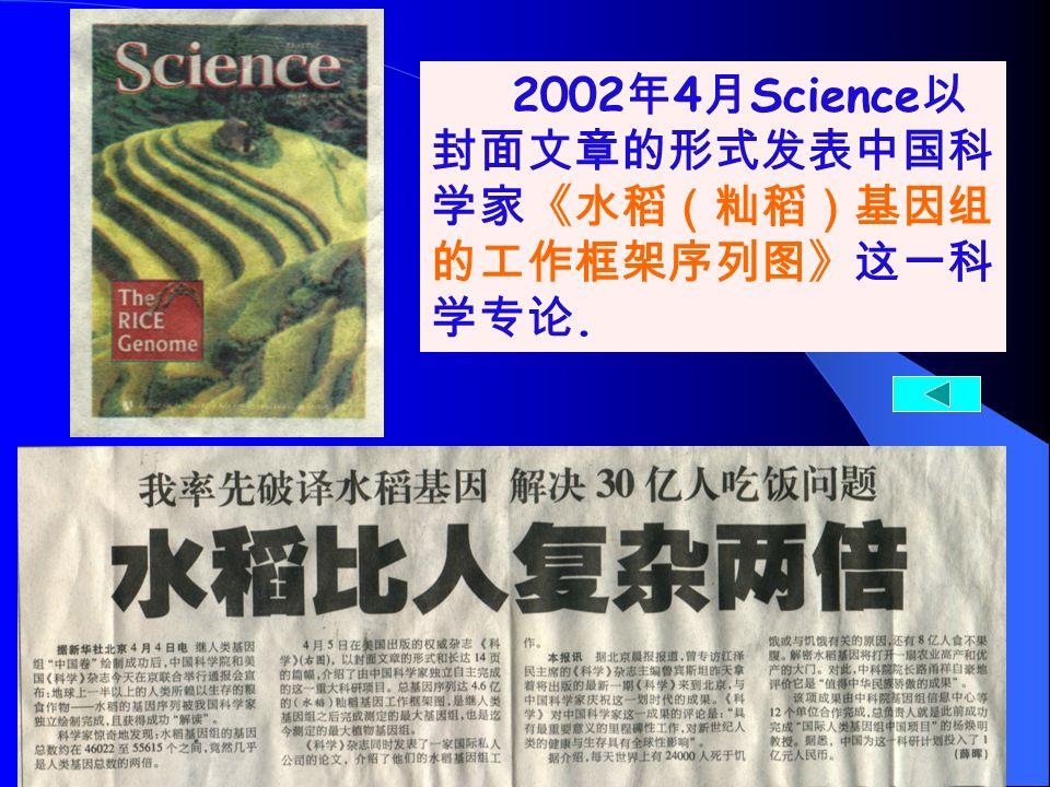 水稻水稻水稻水稻 2002 年 4 月 Science 以 封面文章的形式发表中国科 学家《水稻(籼稻)基因组 的工作框架序列图》这一科 学专论.