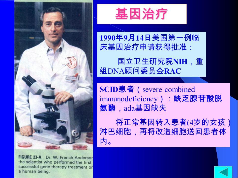 1990 年 9 月 14 日美国第一例临 床基因治疗申请获得批准: 国立卫生研究院 NIH ,重 组 DNA 顾问委员会 RAC SCID 患者( severe combined immunodeficiency ):缺乏腺苷酸脱 氨酶, ada 基因缺失 将正常基因转入患者 (4 岁的女孩) 淋巴细胞,再将改造细胞送回患者体 内。 基因治疗