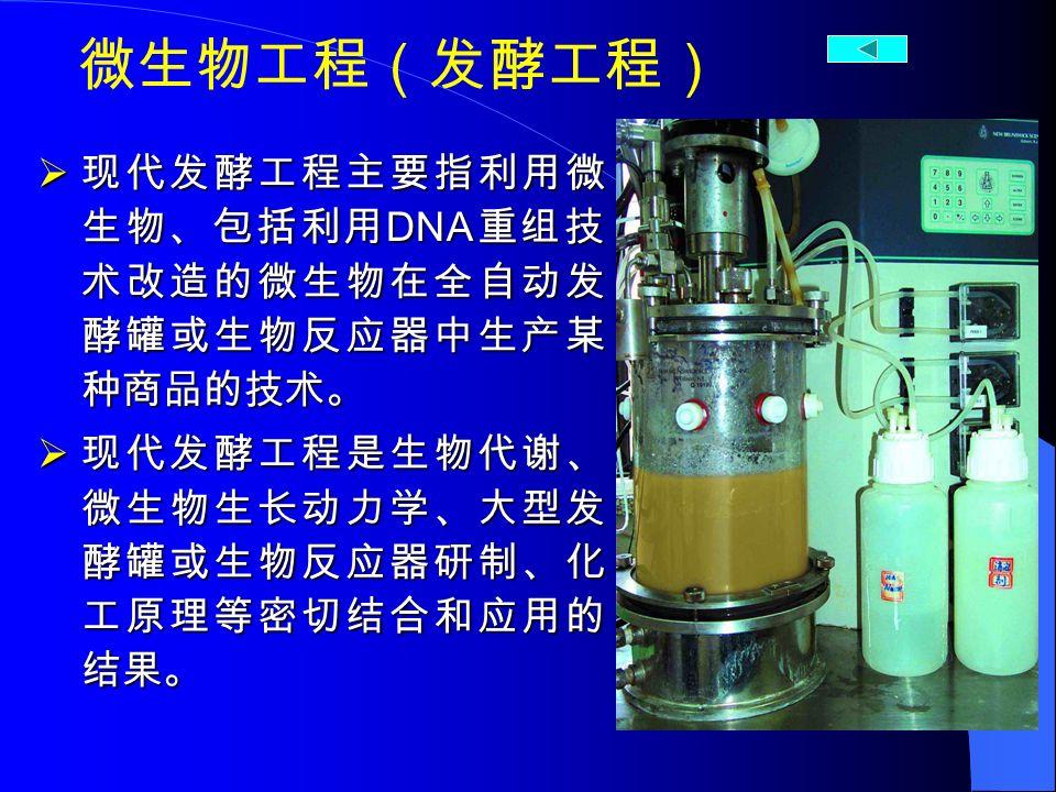 微生物工程(发酵工程)  现代发酵工程主要指利用微 生物、包括利用 DNA 重组技 术改造的微生物在全自动发 酵罐或生物反应器中生产某 种商品的技术。  现代发酵工程是生物代谢、 微生物生长动力学、大型发 酵罐或生物反应器研制、化 工原理等密切结合和应用的 结果。
