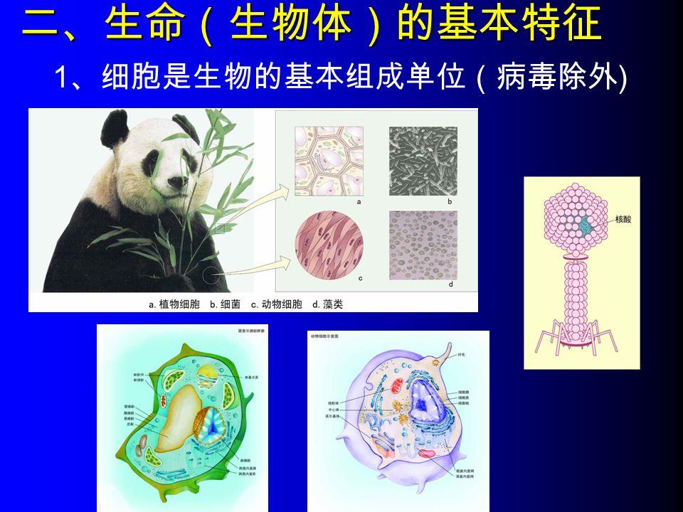 二、生命(生物体)的基本特征 1 、细胞是生物的基本组成单位(病毒除外 )