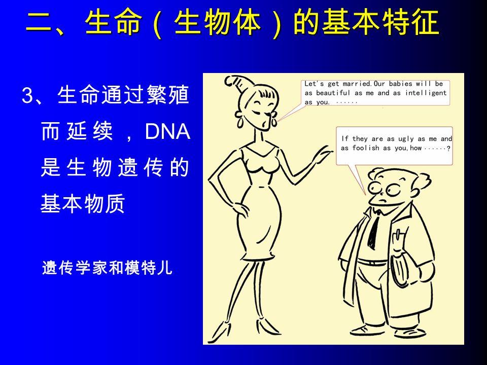 二、生命(生物体)的基本特征 3 、生命通过繁殖 而延续, DNA 是生物遗传的 基本物质 遗传学家和模特儿