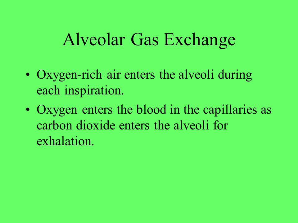 Alveolar Gas Exchange Oxygen-rich air enters the alveoli during each inspiration. Oxygen enters the blood in the capillaries as carbon dioxide enters