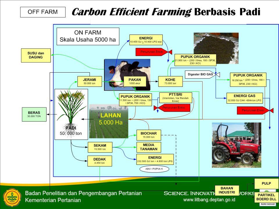Carbon Efficient Farming Berbasis Padi