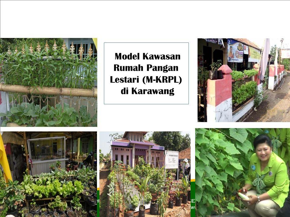 Model Kawasan Rumah Pangan Lestari (M-KRPL) di Karawang