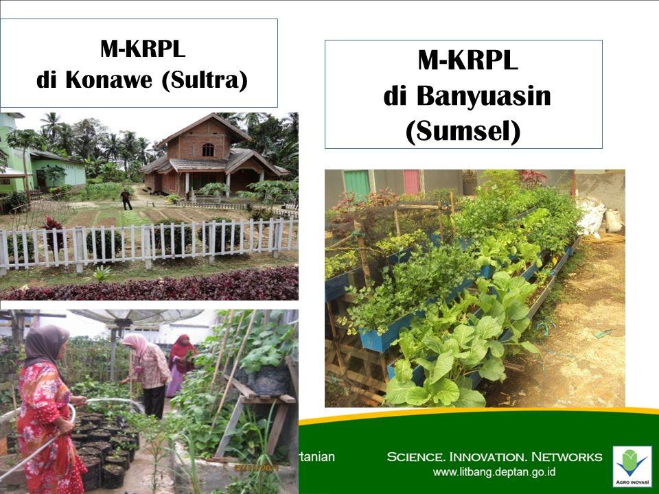 M-KRPL di Konawe (Sultra) M-KRPL di Banyuasin (Sumsel)