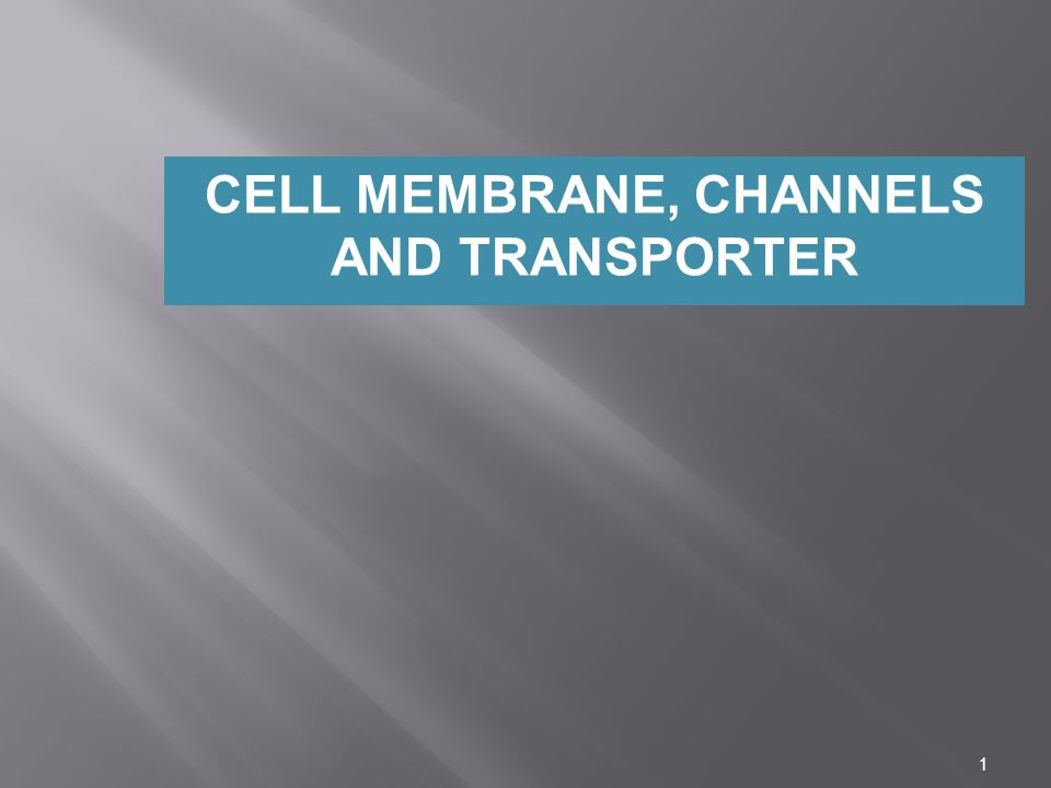 1 CELL MEMBRANE, CHANNELS AND TRANSPORTER