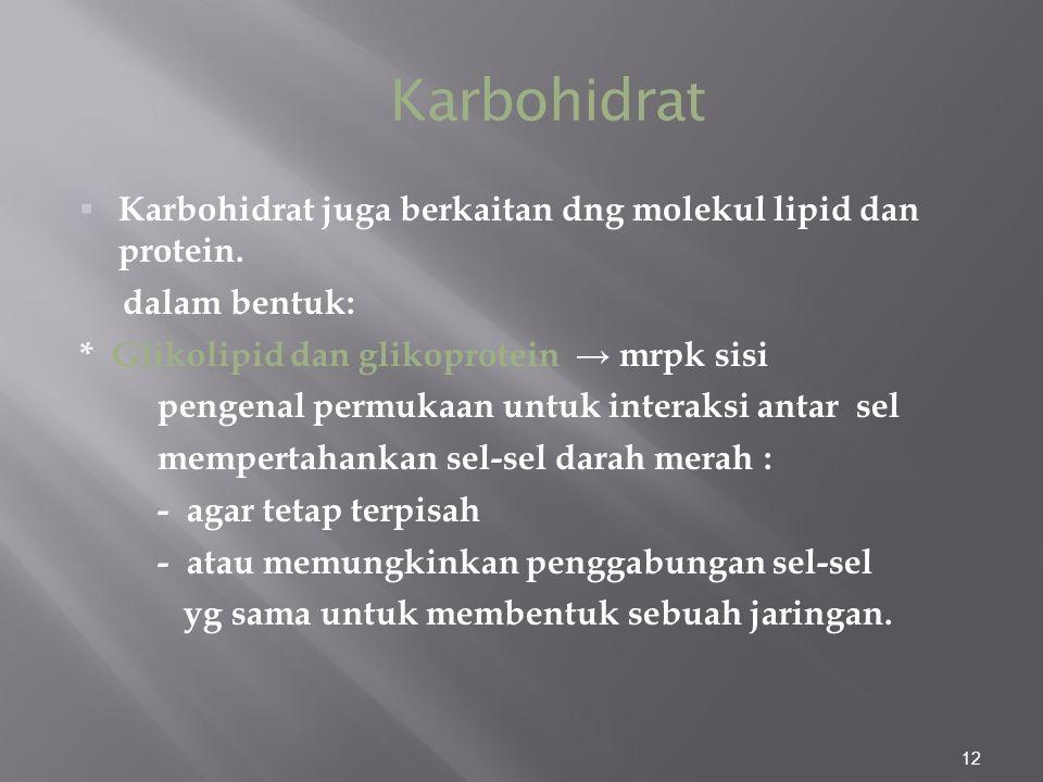 12  Karbohidrat juga berkaitan dng molekul lipid dan protein.