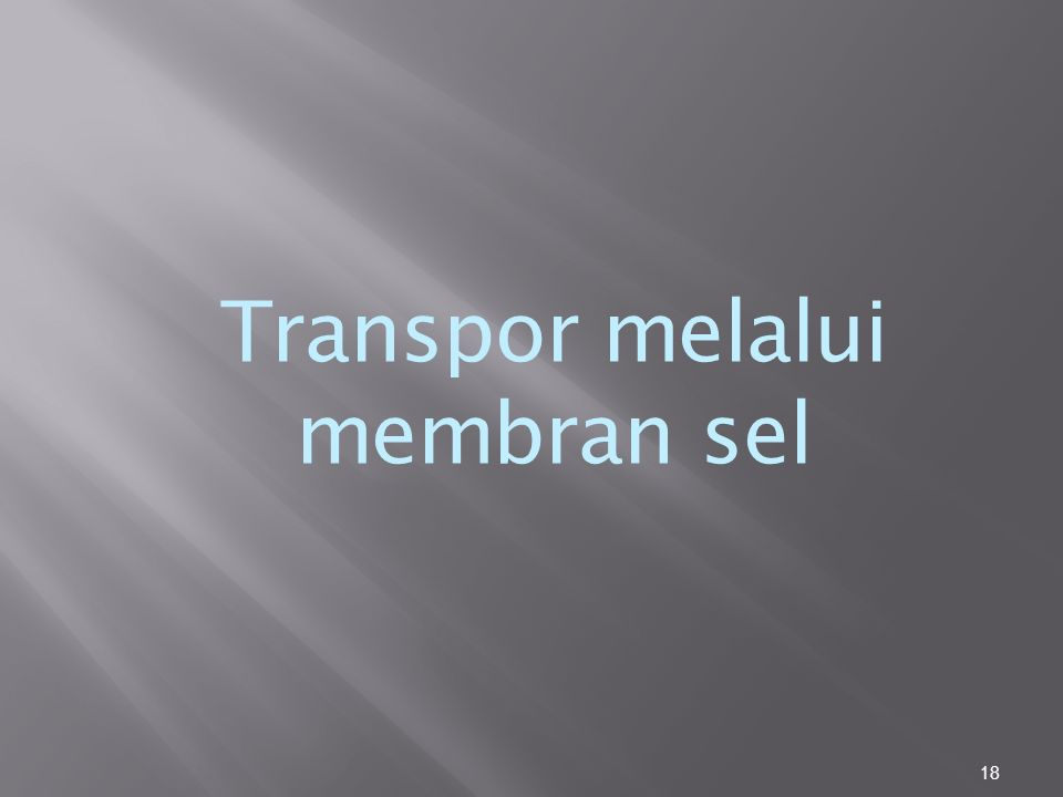 18 Transpor melalui membran sel