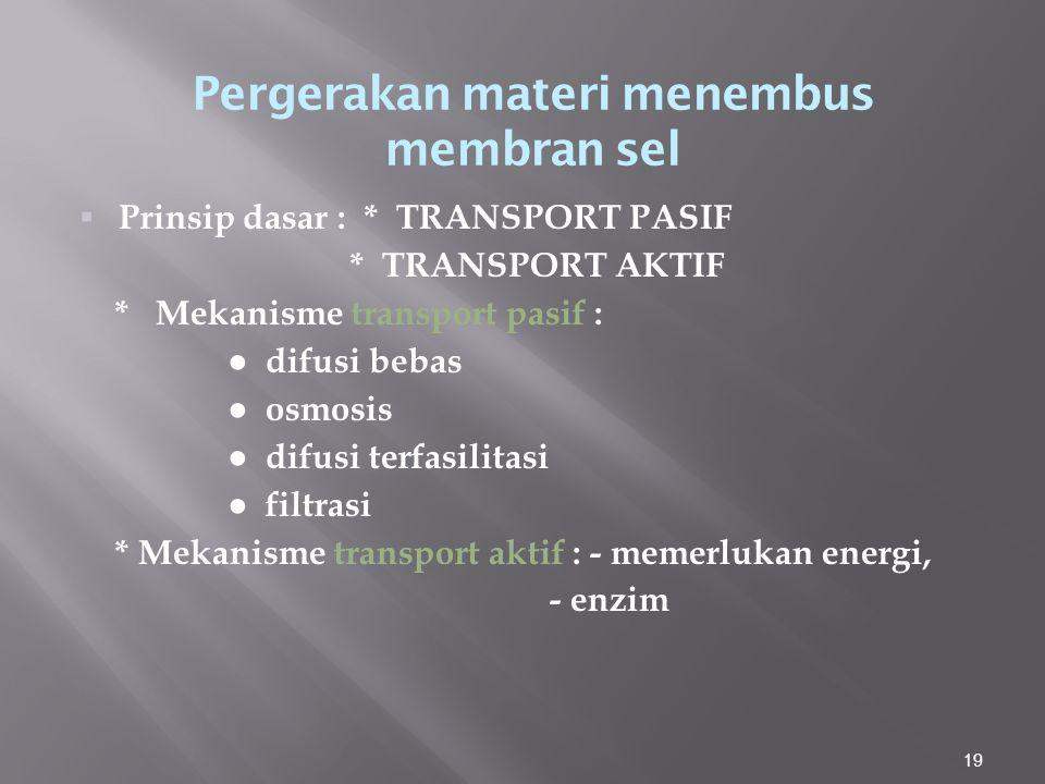 19  Prinsip dasar : * TRANSPORT PASIF * TRANSPORT AKTIF * Mekanisme transport pasif : ● difusi bebas ● osmosis ● difusi terfasilitasi ● filtrasi * Mekanisme transport aktif : - memerlukan energi, - enzim Pergerakan materi menembus membran sel