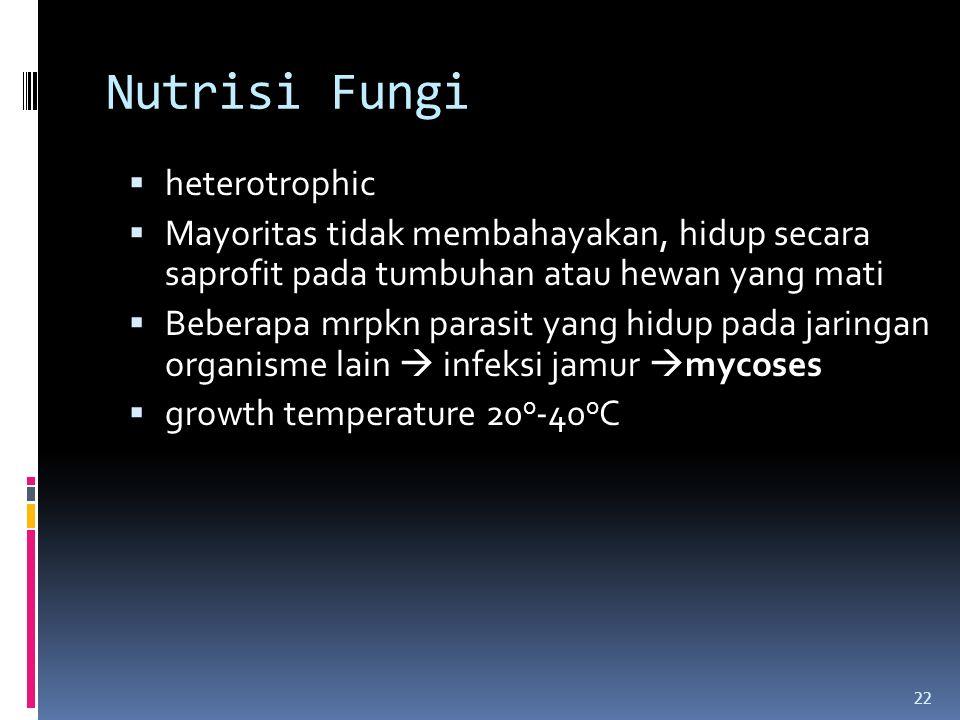 Nutrisi Fungi  heterotrophic  Mayoritas tidak membahayakan, hidup secara saprofit pada tumbuhan atau hewan yang mati  Beberapa mrpkn parasit yang h