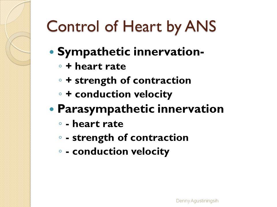 Extrinsic Influences Autonomic nervous system Hormonal influences Ionic influences Temperature influences Denny Agustiningsih